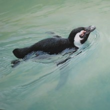 "View ""Penguin - Oil on wood panel"""